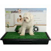EcoPÁTIO Sanitário para Cães com Grama