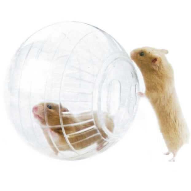 Globo Hamster Acrílico Pequeno 12cm - Importado