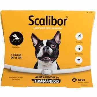 Coleira Antiparasitária Scalibor 48 cm - Cães Pequenos e Médios